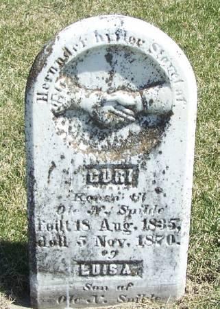 SPILDE, GURI - Winneshiek County, Iowa | GURI SPILDE