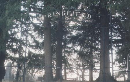 SPRINGFIELD, CEMETERY - Winneshiek County, Iowa | CEMETERY SPRINGFIELD