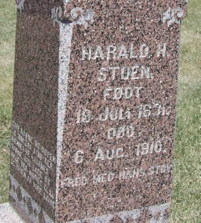 STOEN, HAROLD H - Winneshiek County, Iowa | HAROLD H STOEN