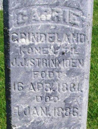 STRINMOEN, CARRIE GRINDELAND - Winneshiek County, Iowa   CARRIE GRINDELAND STRINMOEN