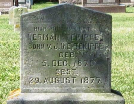 TEKIPPE, HERMAN - Winneshiek County, Iowa | HERMAN TEKIPPE