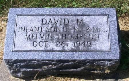 THOMPSON, DAVID M. - Winneshiek County, Iowa | DAVID M. THOMPSON