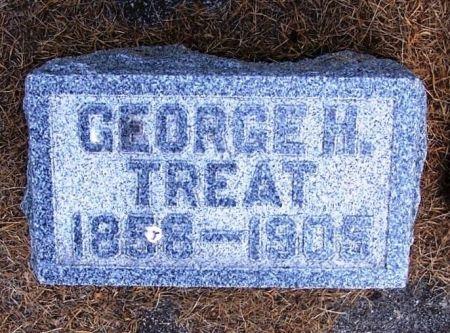 TREAT, GEORGE H. - Winneshiek County, Iowa | GEORGE H. TREAT