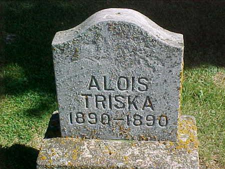 TRISKA, ALOIS - Winneshiek County, Iowa   ALOIS TRISKA