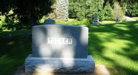 TUCKER, JOHN S. FAMILY STONE - Winneshiek County, Iowa | JOHN S. FAMILY STONE TUCKER