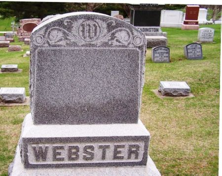 WEBSTER, EMELINE FAMILY STONE - Winneshiek County, Iowa | EMELINE FAMILY STONE WEBSTER