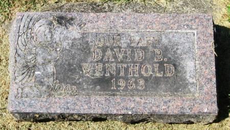 WENTHOLD, DAVID B. - Winneshiek County, Iowa   DAVID B. WENTHOLD