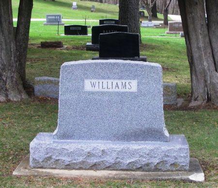 WILLIAMS, EVERTT L. FAMILY STONE - Winneshiek County, Iowa | EVERTT L. FAMILY STONE WILLIAMS
