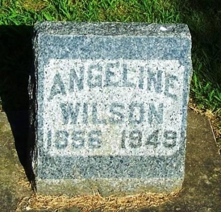 WILSON, ANGELINE - Winneshiek County, Iowa   ANGELINE WILSON