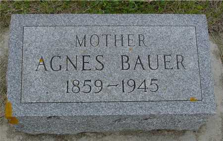 BAUER, AGNES - Woodbury County, Iowa   AGNES BAUER