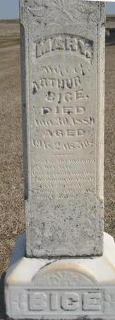 BICE, MARY - Woodbury County, Iowa   MARY BICE