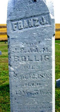 BOLLIG, FRANZ J. - Woodbury County, Iowa | FRANZ J. BOLLIG