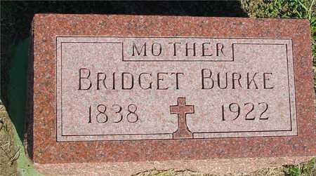 BURKE, BRIDGET - Woodbury County, Iowa | BRIDGET BURKE