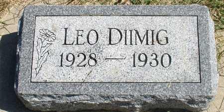 DIIMIG, LEO - Woodbury County, Iowa   LEO DIIMIG