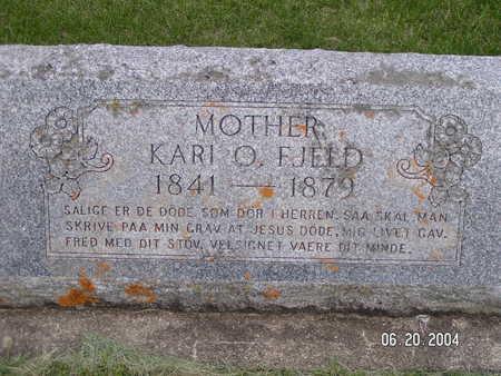 FJELD, KARI O. - Worth County, Iowa | KARI O. FJELD