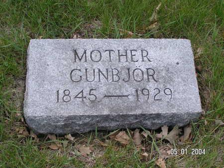 JOHNSON, GUNBJOR - Worth County, Iowa   GUNBJOR JOHNSON