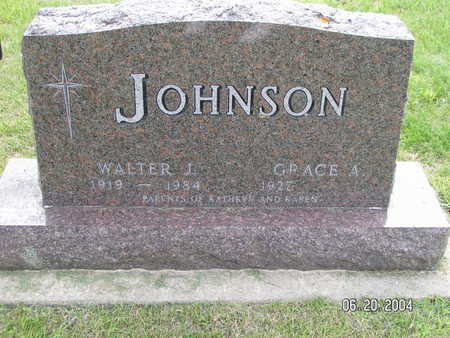 JOHNSON, WALTER J. - Worth County, Iowa | WALTER J. JOHNSON