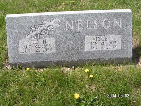 NELSON, NELS H. - Worth County, Iowa | NELS H. NELSON