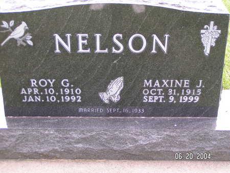 NELSON, ROY G. - Worth County, Iowa | ROY G. NELSON