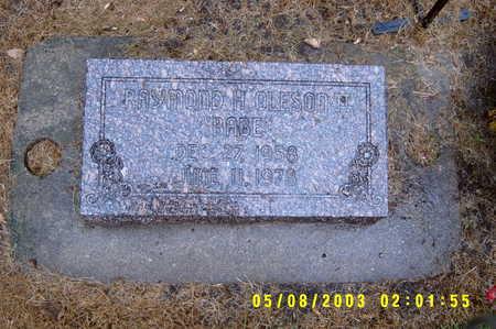 OLESON, RAYMOND HENRY THE II - Worth County, Iowa | RAYMOND HENRY THE II OLESON