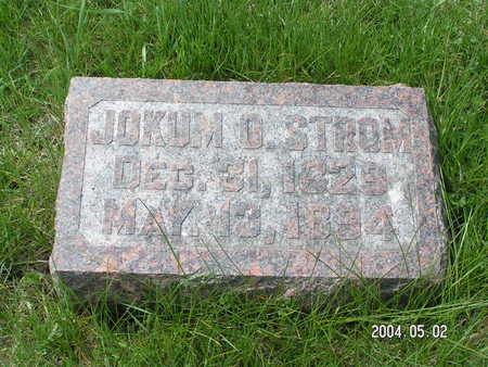 STROM, JOKUM O. - Worth County, Iowa | JOKUM O. STROM