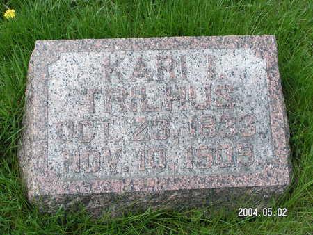 TRILHUS, KARI I. - Worth County, Iowa | KARI I. TRILHUS