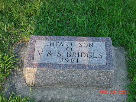 BRIDGES, INFANT SON - Wright County, Iowa | INFANT SON BRIDGES