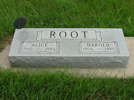 ROOT, ALICE - Wright County, Iowa | ALICE ROOT
