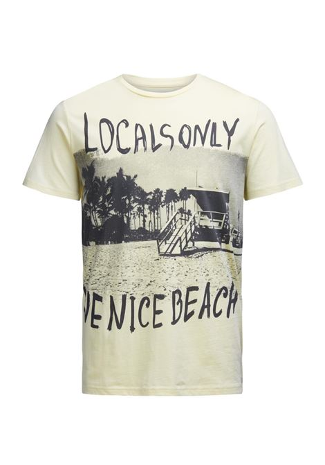 JORJAW TEE SS CREW NECK JACK&JONES | T-shirt | 12120909ANISEFLOWER