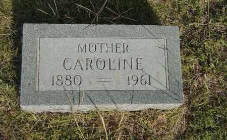 DIRKS, CAROLINE - Barton County, Kansas | CAROLINE DIRKS - Kansas Gravestone Photos