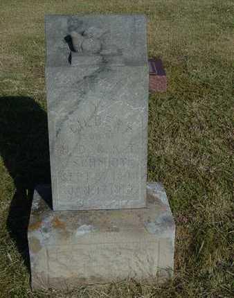 SCHMIDT, GILBERT - Barton County, Kansas | GILBERT SCHMIDT - Kansas Gravestone Photos