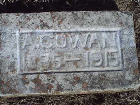 COWAN, ANDREW - Bourbon County, Kansas | ANDREW COWAN - Kansas Gravestone Photos