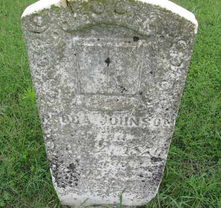 JOHNSON, FREDA - Chautauqua County, Kansas | FREDA JOHNSON - Kansas Gravestone Photos