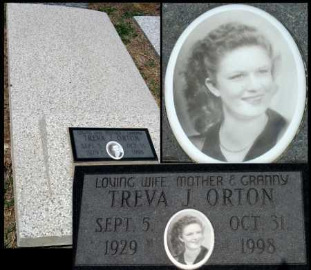 THOMAS ORTON, TREVA JANELL - Cherokee County, Kansas | TREVA JANELL THOMAS ORTON - Kansas Gravestone Photos