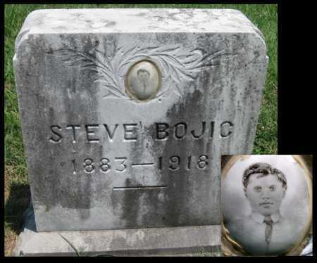 BOJIC, STEVE - Crawford County, Kansas | STEVE BOJIC - Kansas Gravestone Photos