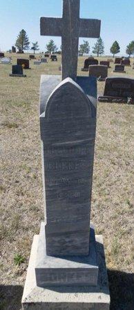 BORKES, THEODORE - Ford County, Kansas | THEODORE BORKES - Kansas Gravestone Photos