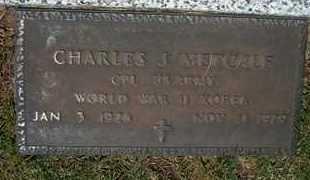 METCALF, CHARLES J   (VETERAN 2 WARS) - Grant County, Kansas | CHARLES J   (VETERAN 2 WARS) METCALF - Kansas Gravestone Photos
