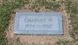 PITTS, CHARLES H - Grant County, Kansas   CHARLES H PITTS - Kansas Gravestone Photos