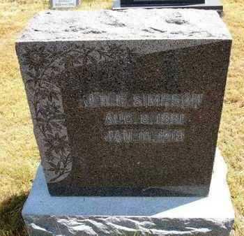 SIMPSON, JOHN T  E - Greeley County, Kansas | JOHN T  E SIMPSON - Kansas Gravestone Photos