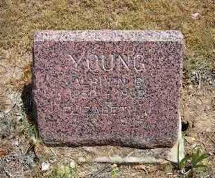 YOUNG, ALBURN B - Greeley County, Kansas | ALBURN B YOUNG - Kansas Gravestone Photos