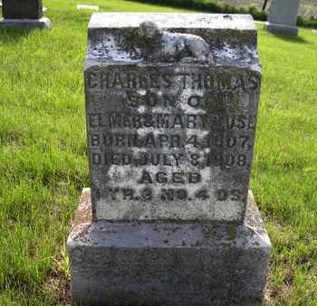 LUSE, CHARLES THOMAS - Leavenworth County, Kansas | CHARLES THOMAS LUSE - Kansas Gravestone Photos