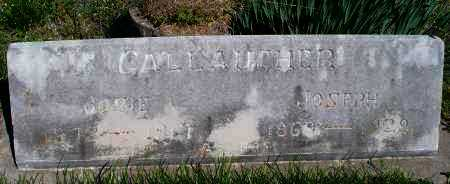 GALLAUGHER, JOSIE - Montgomery County, Kansas | JOSIE GALLAUGHER - Kansas Gravestone Photos