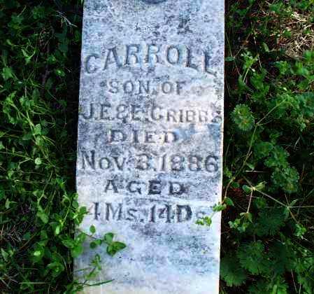 GRIBBS, CARROLL - Montgomery County, Kansas | CARROLL GRIBBS - Kansas Gravestone Photos