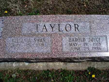 TAYLOR, VIRGINIA - Montgomery County, Kansas | VIRGINIA TAYLOR - Kansas Gravestone Photos