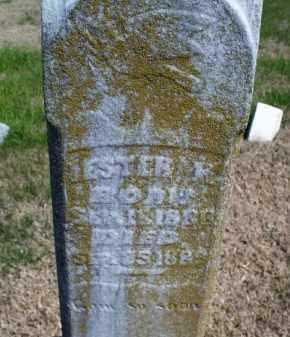UNKNOWN, LESTER - Montgomery County, Kansas   LESTER UNKNOWN - Kansas Gravestone Photos