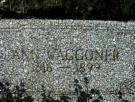 WAGGONER, ANN - Montgomery County, Kansas   ANN WAGGONER - Kansas Gravestone Photos