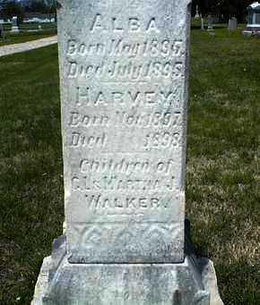 WALKER, ALBA - Montgomery County, Kansas   ALBA WALKER - Kansas Gravestone Photos