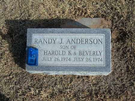 ANDERSON, RANDY J - Morton County, Kansas | RANDY J ANDERSON - Kansas Gravestone Photos