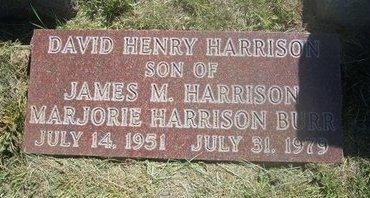 HARRISON, DAVID HENRY - Wichita County, Kansas | DAVID HENRY HARRISON - Kansas Gravestone Photos