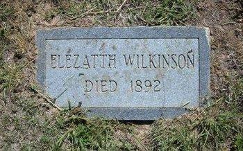 WILKINSON, ELEZATTH - Wichita County, Kansas | ELEZATTH WILKINSON - Kansas Gravestone Photos